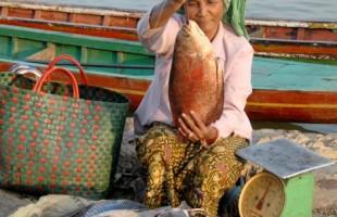 Cambodia Khmer fish-seller